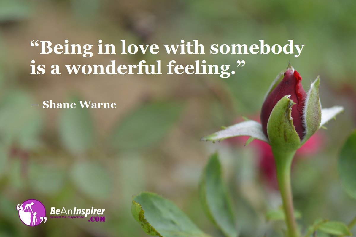 Being-in-love-with-somebody-is-a-wonderful-feeling-Shane-Warne-Love-Feeling-Be-An-Inspirer