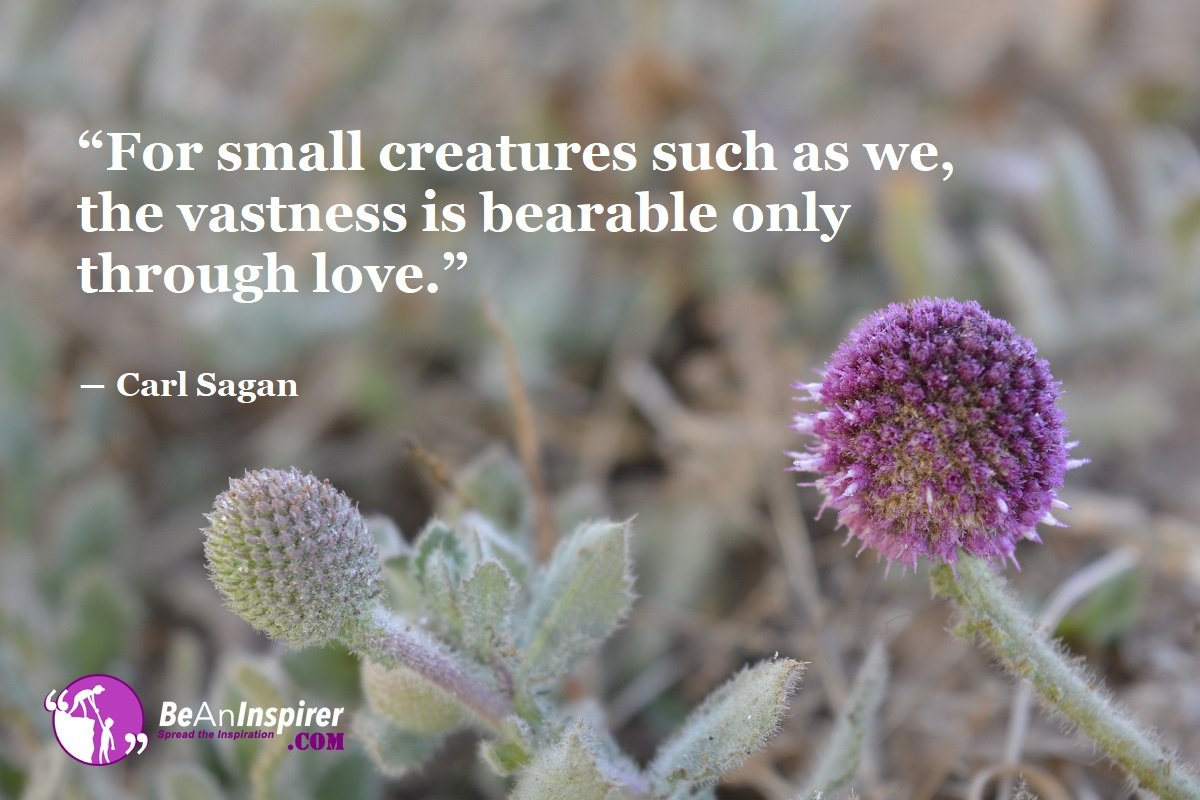 For-small-creatures-such-as-we-the-vastness-is-bearable-only-through-love-Carl-Sagan-Top-100-Love-Quotes-Be-An-Inspirer