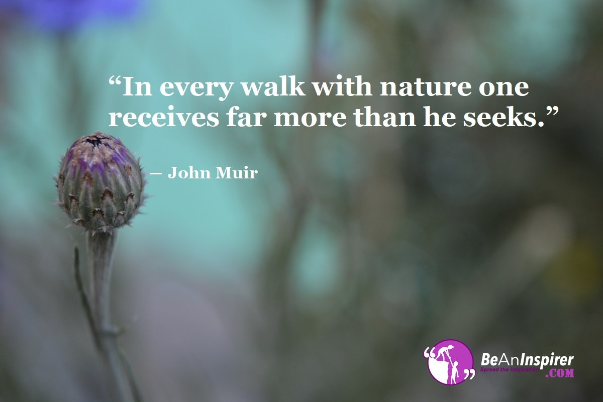 In-every-walk-with-nature-one-receives-far-more-than-he-seeks-John-Muir-Nature-Quotes-Be-An-Inspirer