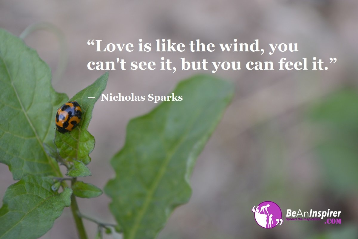 Love-is-like-the-wind-you-cant-see-it-but-you-can-feel-it-Nicholas-Sparks-Top-100-Love-Quotes-Be-An-Inspirer