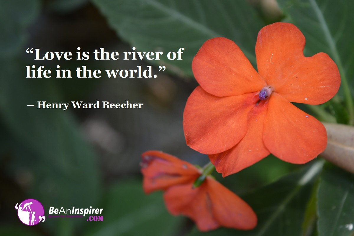 Love-is-the-river-of-life-in-the-world-Henry-Ward-Beecher-Top-100-Love-Quotes-Be-An-Inspirer