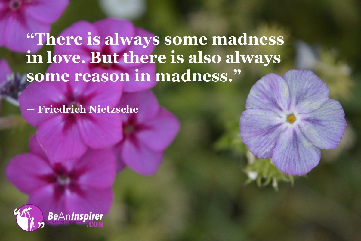 There-is-always-some-madness-in-love-But-there-is-also-always-some-reason-in-madness-Friedrich-Nietzsche-Top-100-Love-Quotes-Be-An-Inspirer