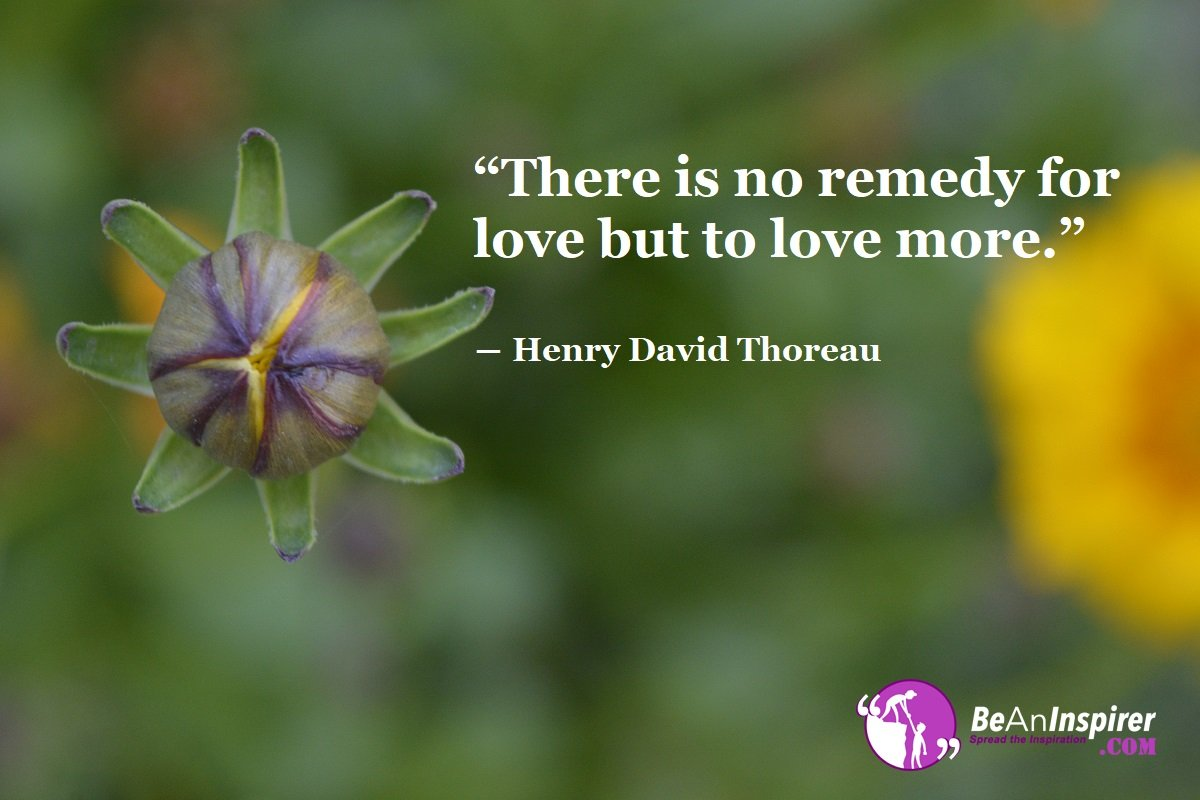There-is-no-remedy-for-love-but-to-love-more-Henry-David-Thoreau-Top-100-Love-Quotes-Be-An-Inspirer