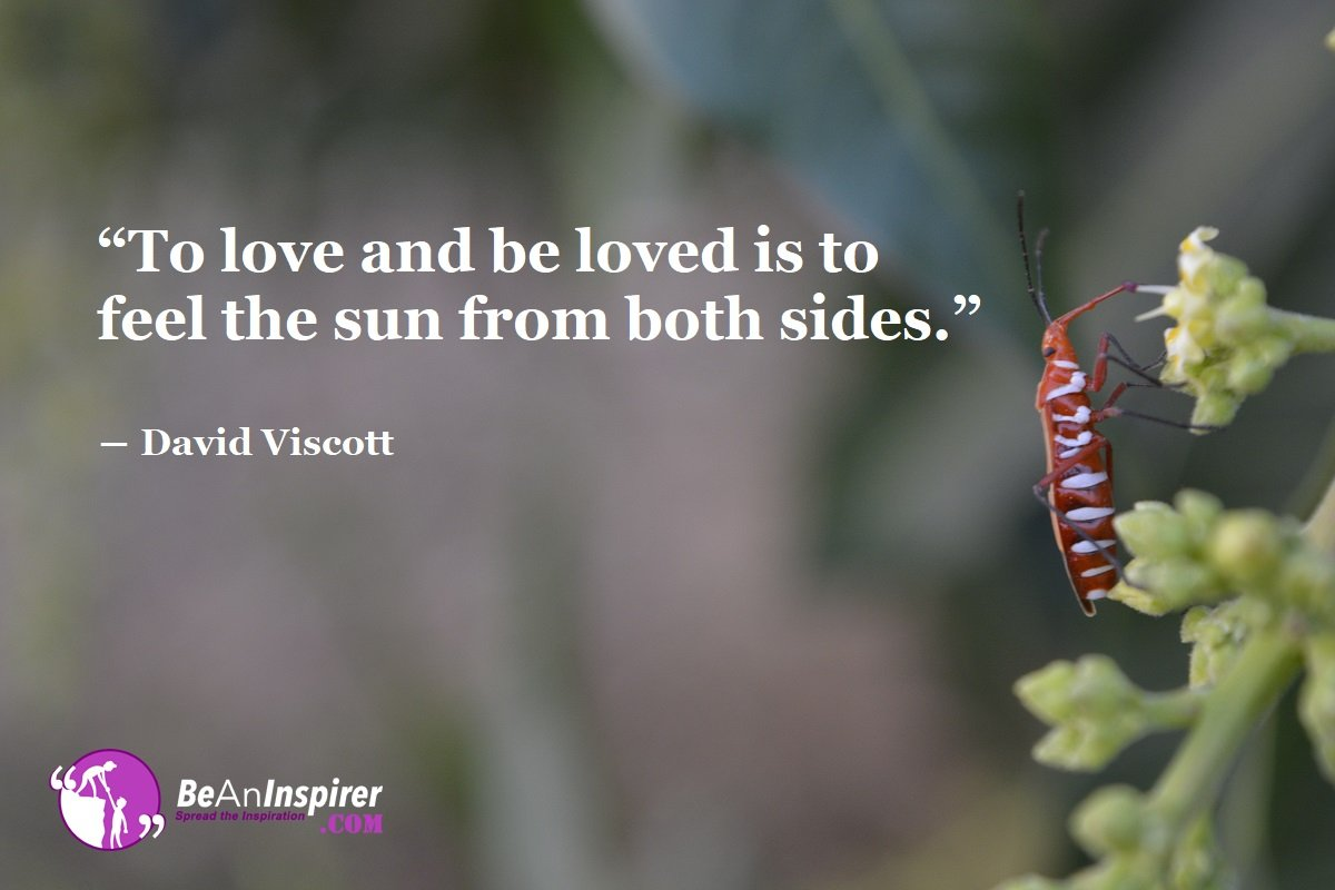 To-love-and-be-loved-is-to-feel-the-sun-from-both-sides-David-Viscott-Top-100-Love-Quotes-Be-An-Inspirer