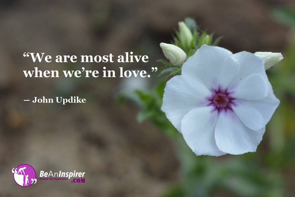 We-are-most-alive-when-we-re-in-love-John-Updike-Top-100-Love-Quotes-Be-An-Inspirer