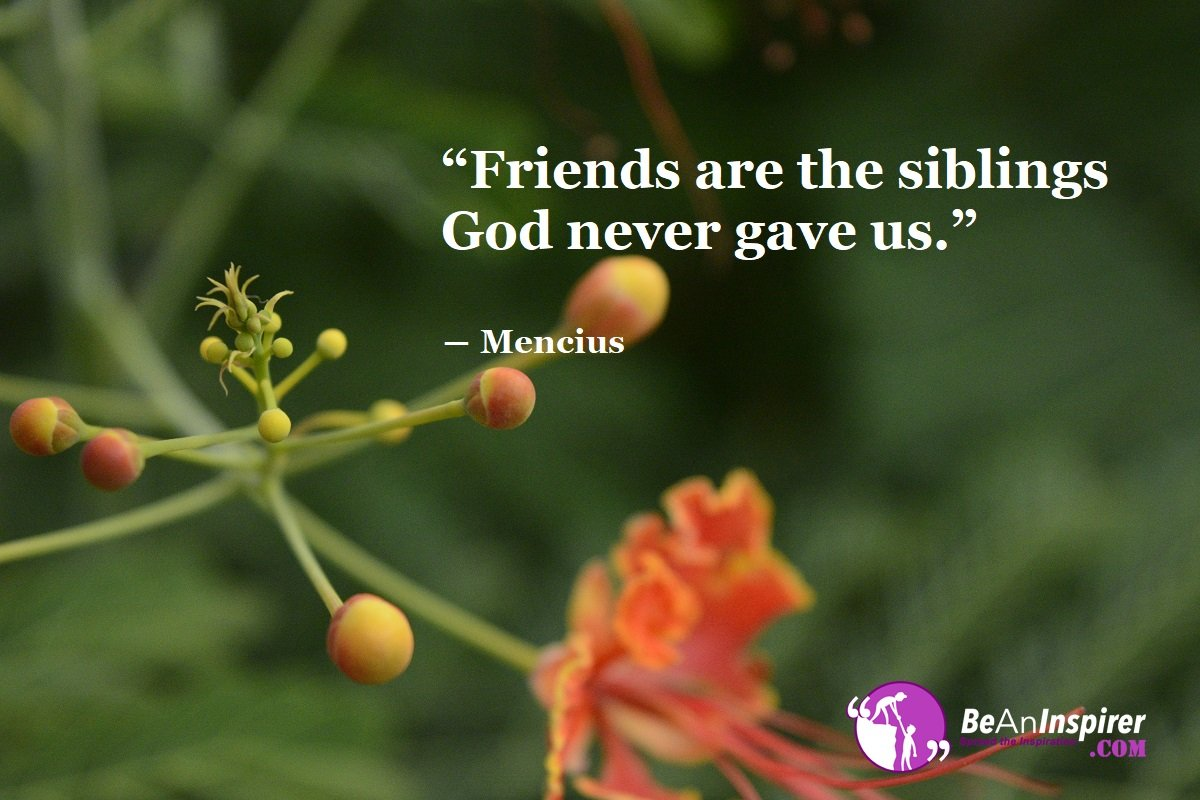 Friends-are-the-siblings-God-never-gave-us-Mencius-Top-100-Friendship-Quotes-Be-An-Inspirer
