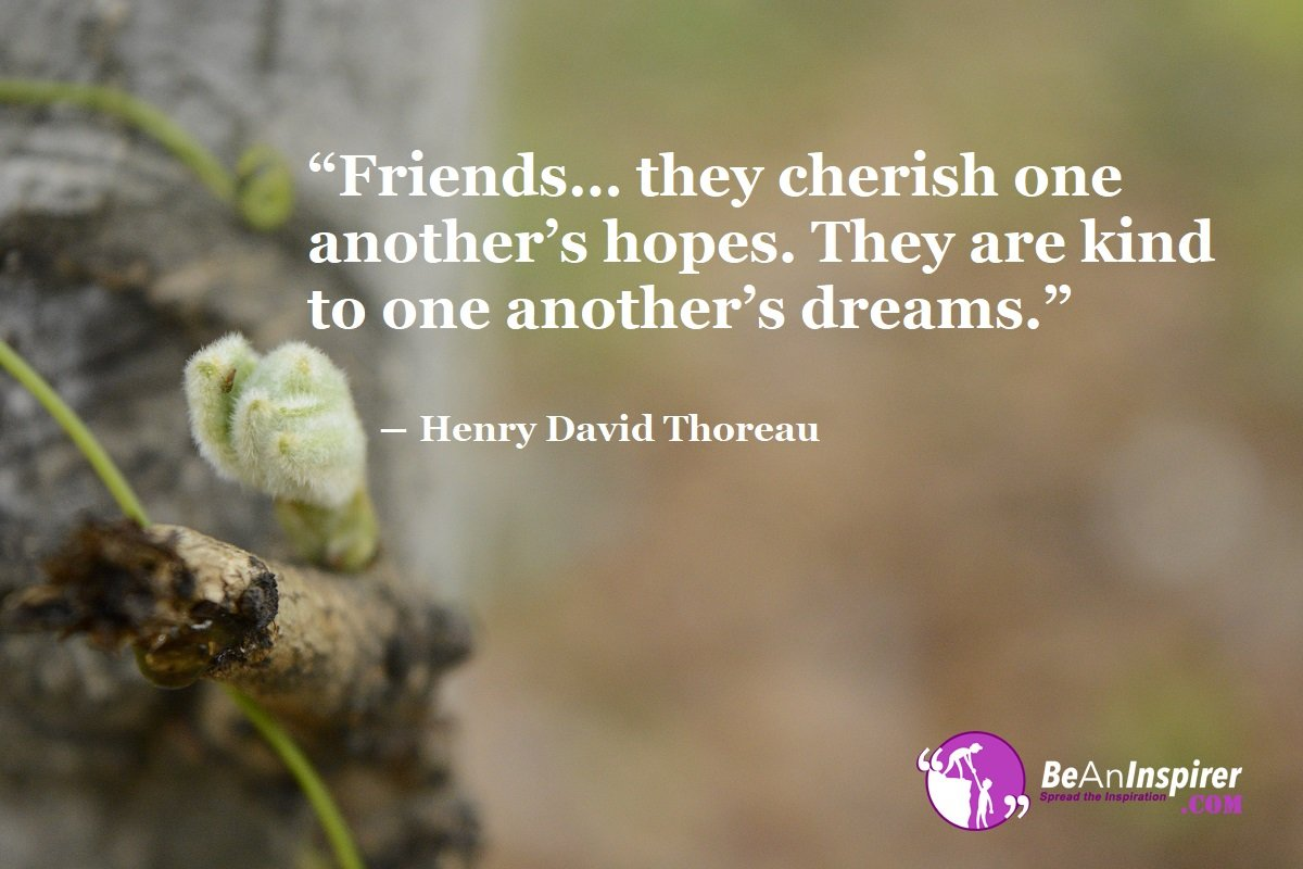 Friends-they-cherish-one-anothers-hopes-They-are-kind-to-one-anothers-dreams-Henry-David-Thoreau-Top-100-Friendship-Quotes-Be-An-Inspirer