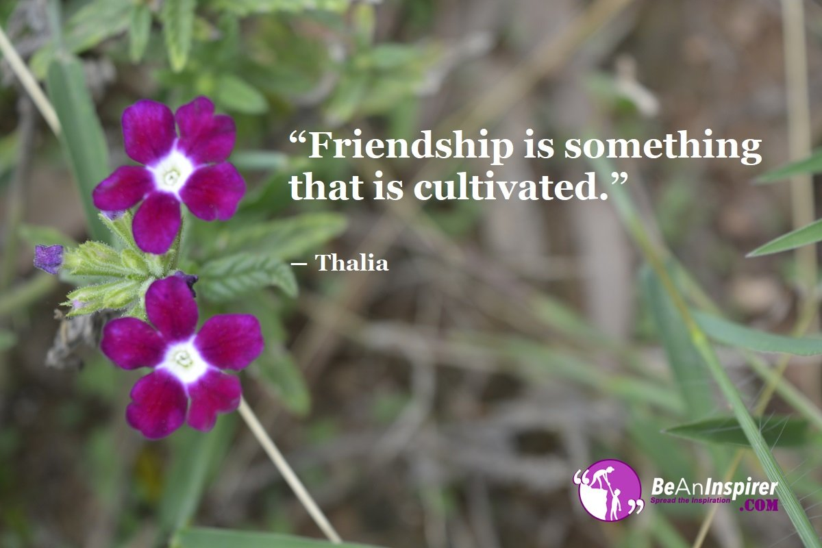 Friendship-is-something-that-is-cultivated-Thalia-Top-100-Friendship-Quotes-Be-An-Inspirer