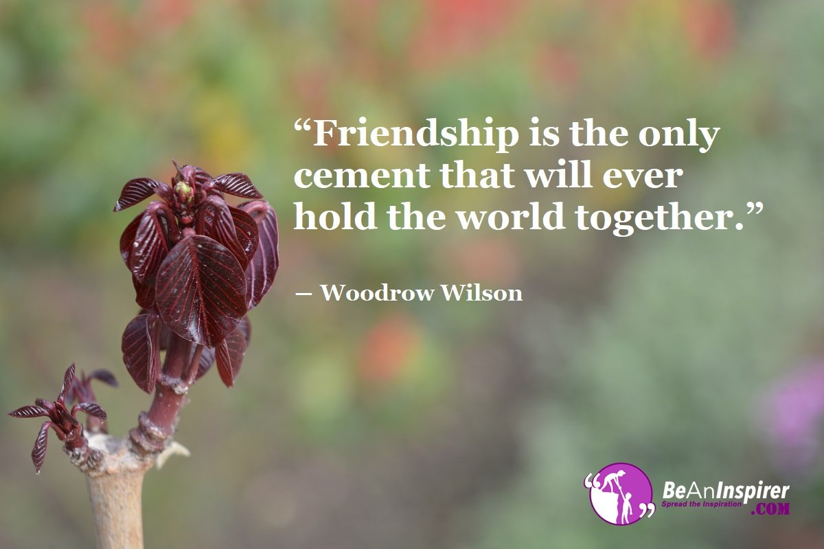 Friendship-is-the-only-cement-that-will-ever-hold-the-world-together-Woodrow-Wilson-Top-100-Friendship-Quotes-Be-An-Inspirer
