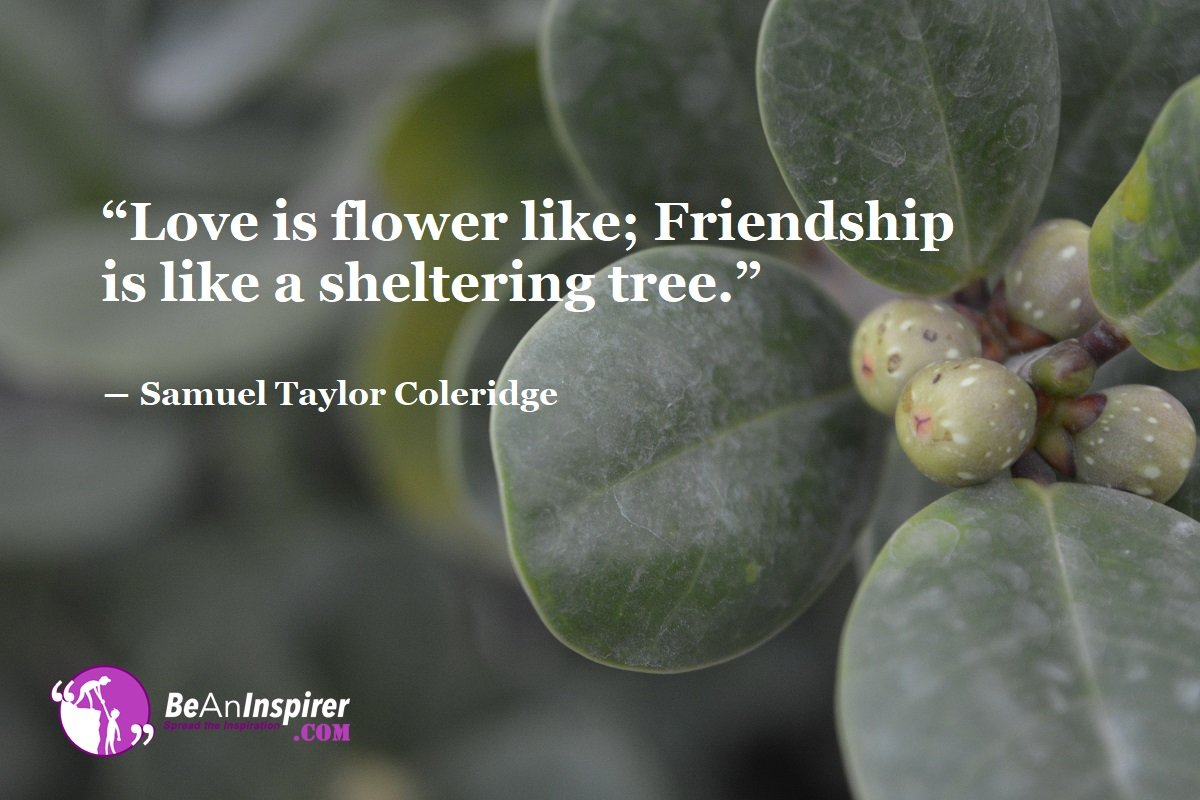 Love-is-flower-like-Friendship-is-like-a-sheltering-tree-Samuel-Taylor-Coleridge-Top-100-Friendship-Quotes-Be-An-Inspirer