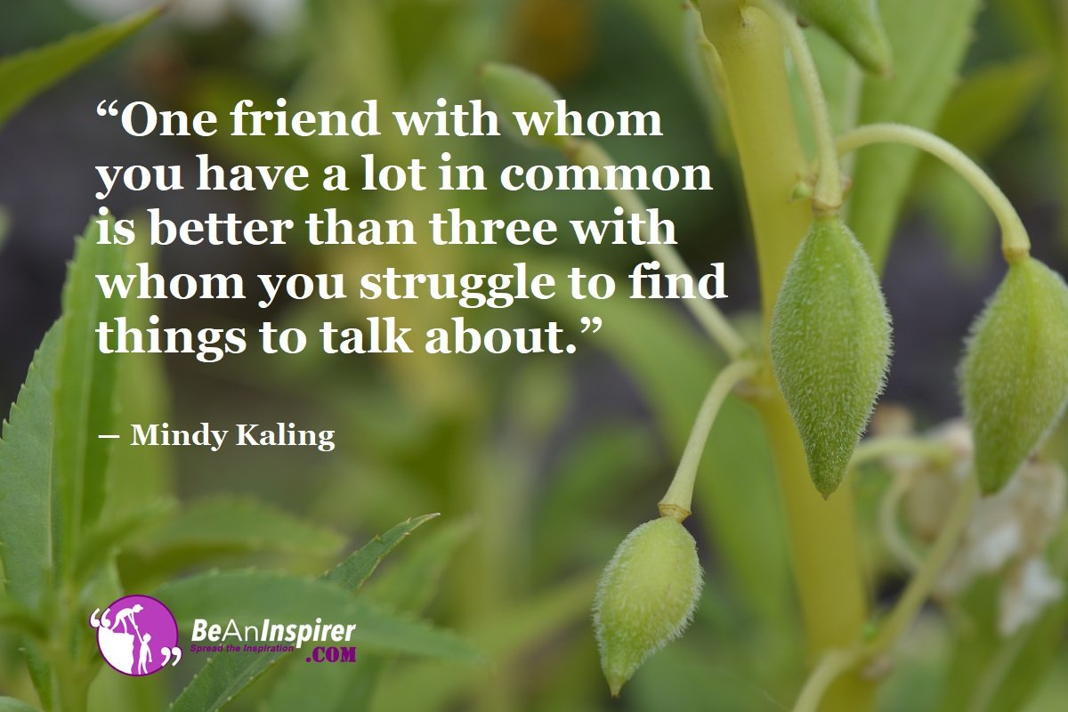One-friend-with-whom-you-have-a-lot-in-common-is-better-than-three-with-whom-you-struggle-to-find-things-to-talk-about-Mindy-Kaling-Top-100-Friendship-Quotes-Be-An-Inspirer
