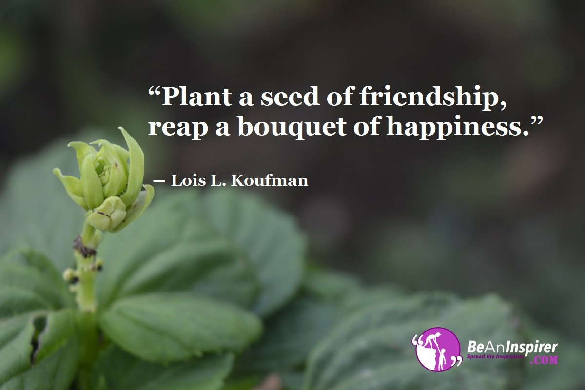 Plant-a-seed-of-friendship-reap-a-bouquet-of-happiness-Lois-L-Koufman-Top-100-Friendship-Quotes-Be-An-Inspirer