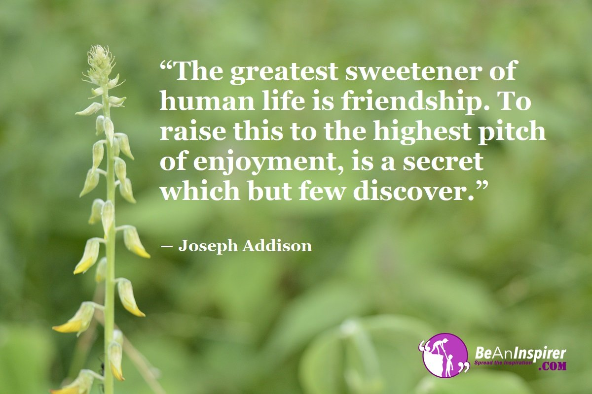 The-greatest-sweetener-of-human-life-is-friendship-To-raise-this-to-the-highest-pitch-of-enjoyment-is-a-secret-which-but-few-discover-Joseph-Addison-Top-100-Friendship-Quotes-Be-An-Inspirer