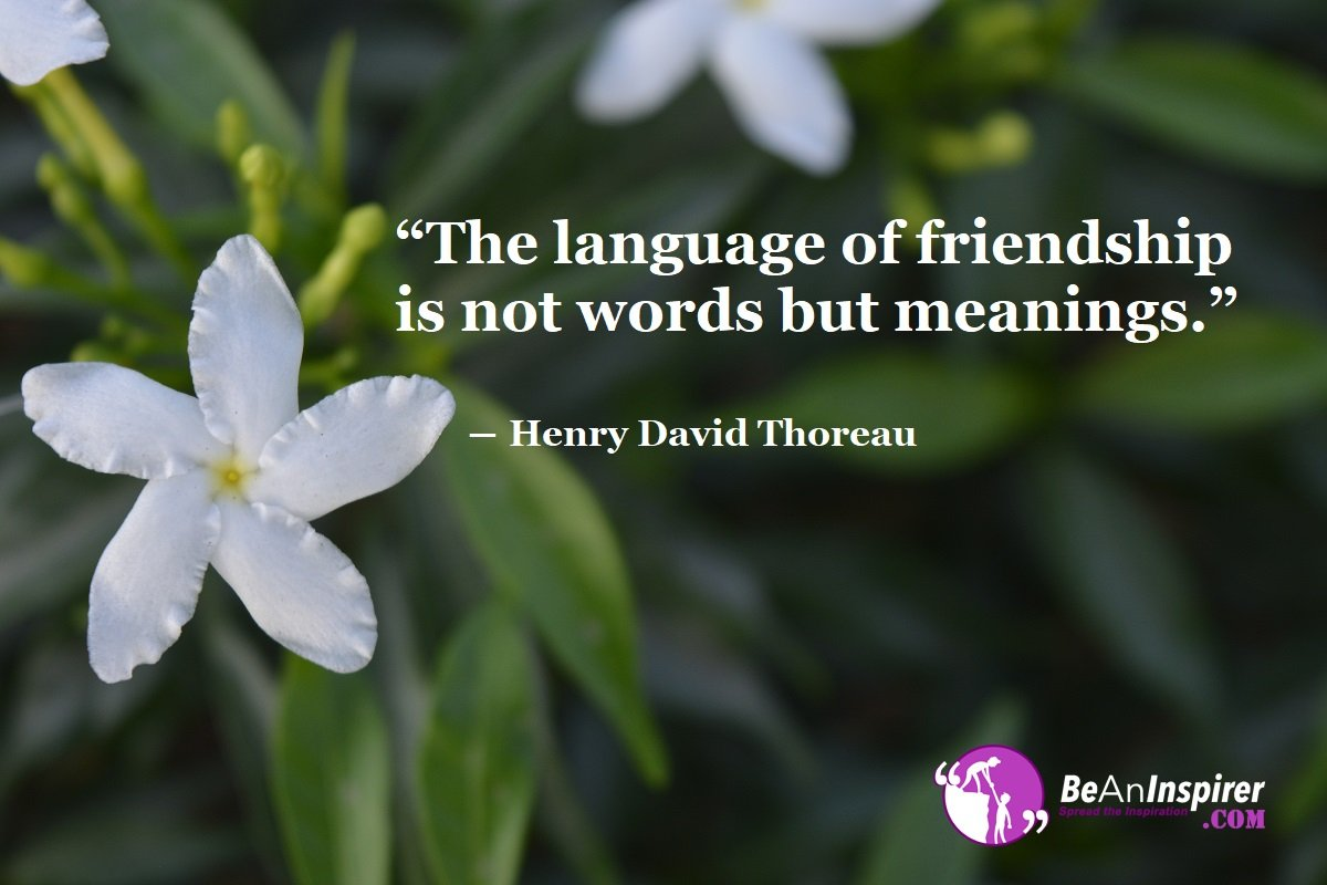The-language-of-friendship-is-not-words-but-meanings-Henry-David-Thoreau-Top-100-Friendship-Quotes-Be-An-Inspirer