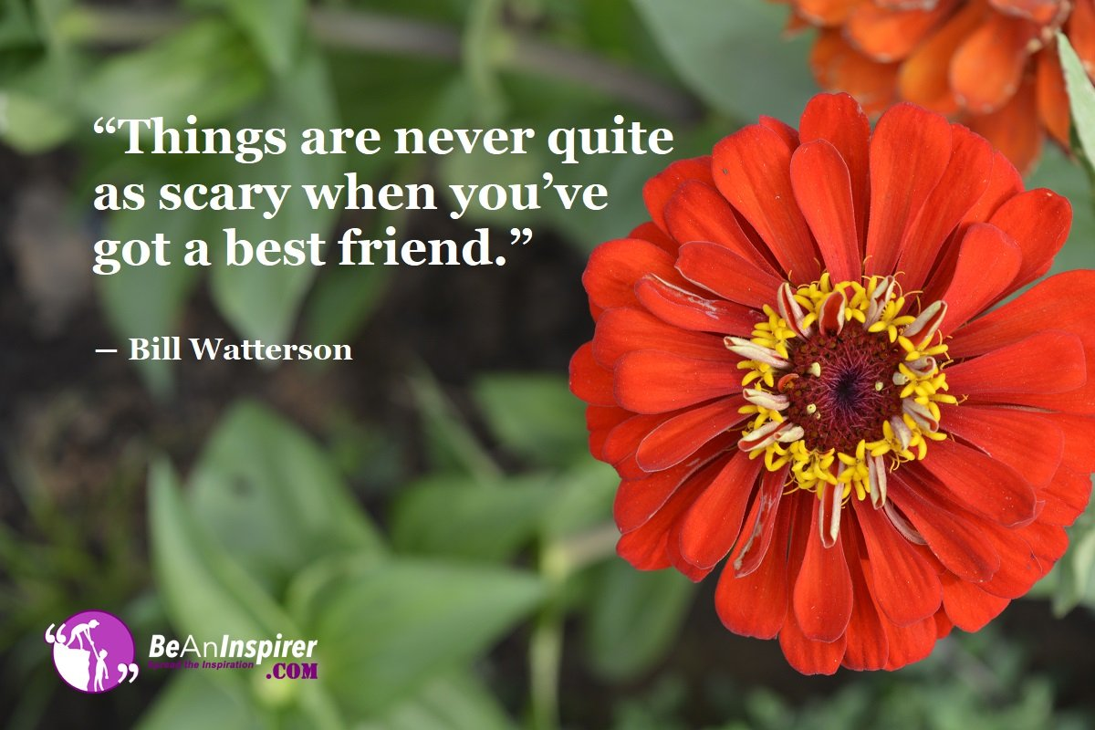 Things-are-never-quite-as-scary-when-you-ve-got-a-best-friend-Bill-Watterson-Top-100-Friendship-Quotes-Be-An-Inspirer
