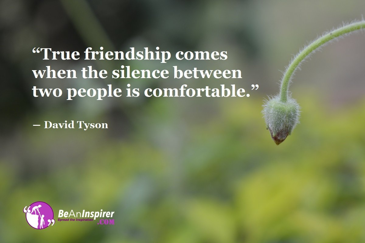 True-friendship-comes-when-the-silence-between-two-people-is-comfortable-David-Tyson-Top-100-Friendship-Quotes-Be-An-Inspirer