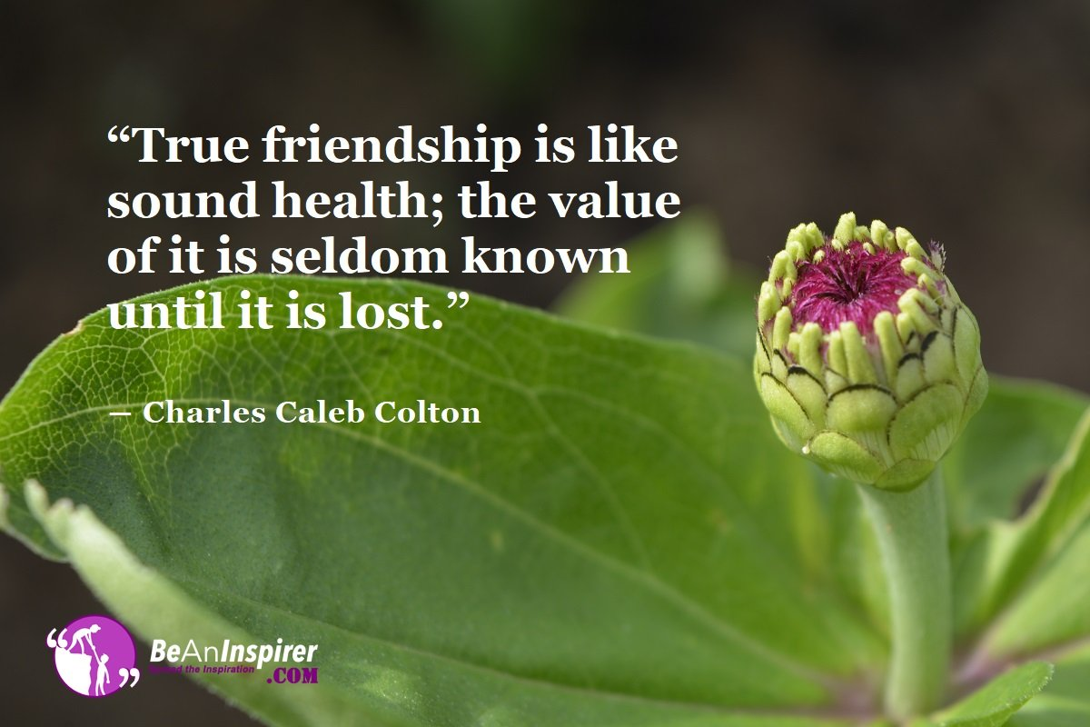 True-friendship-is-like-sound-health-the-value-of-it-is-seldom-known-until-it-is-lost-Charles-Caleb-Colton-Top-100-Friendship-Quotes-Be-An-Inspirer