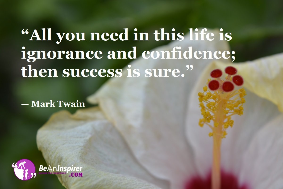 All-you-need-in-this-life-is-ignorance-and-confidence-then-success-is-sure-Mark-Twain-Top-100-Life-Quotes-Be-An-Inspirer