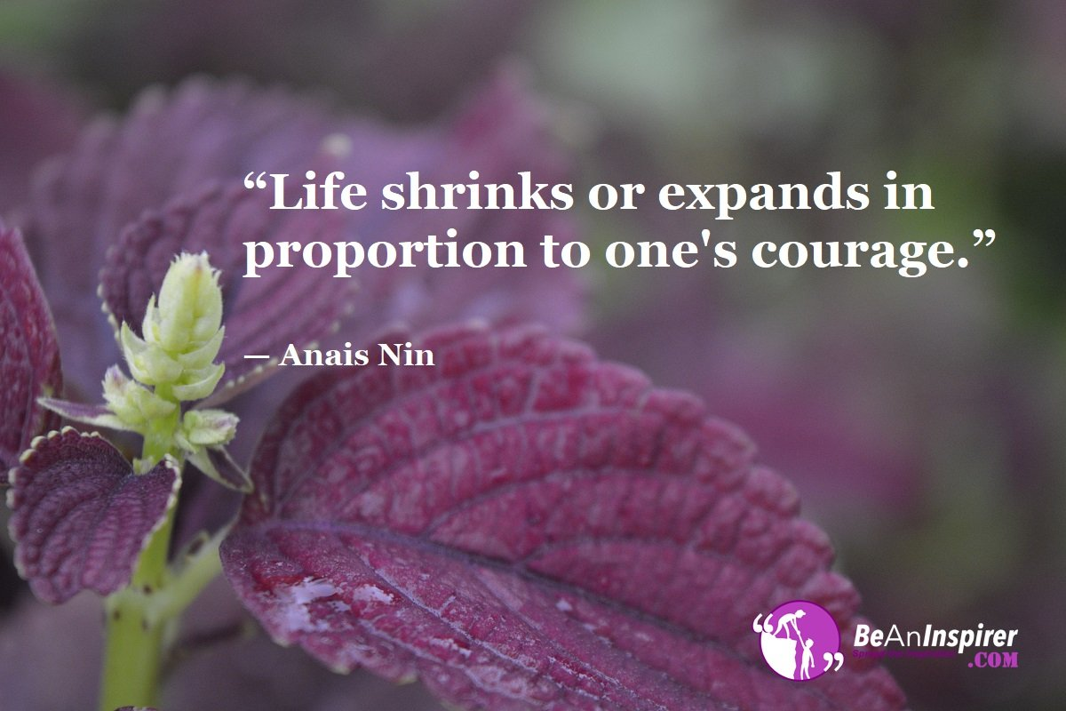 Life-shrinks-or-expands-in-proportion-to-ones-courage-Anais-Nin-Top-100-Life-Quotes-Be-An-Inspirer
