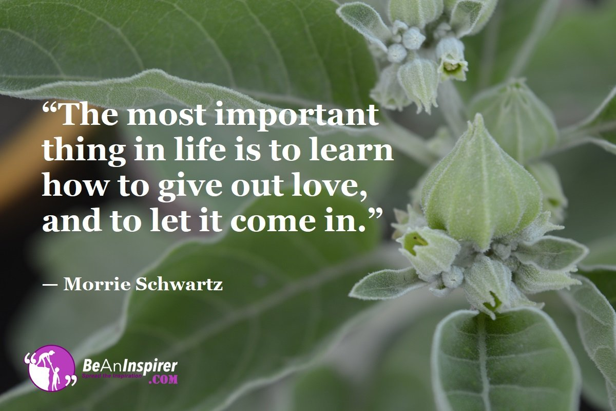 The-most-important-thing-in-life-is-to-learn-how-to-give-out-love-and-to-let-it-come-in-Morrie-Schwartz-Top-100-Life-Quotes-Be-An-Inspirer